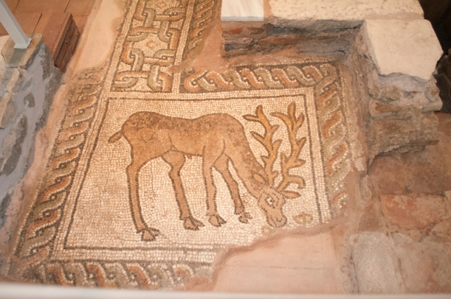 Floor mosaics from the Small Basilica in Bulgaria's Plovdiv depicting a deer. Photo by Petya Tarnovaliyska, petminuti.com